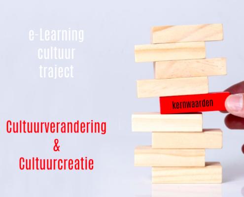 e-Learning voor cultuurverandering en cultuurcreatie